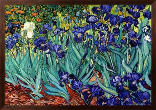 irises-saint-remy-c1889